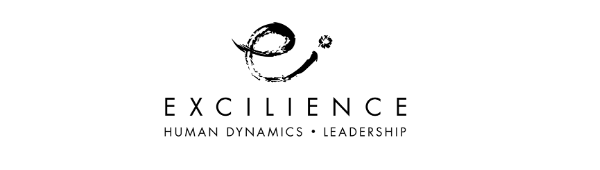 Excilience